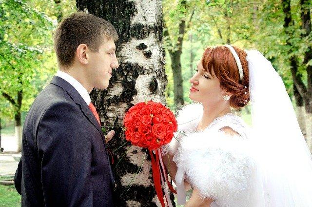 wedding-806312_1280 resized
